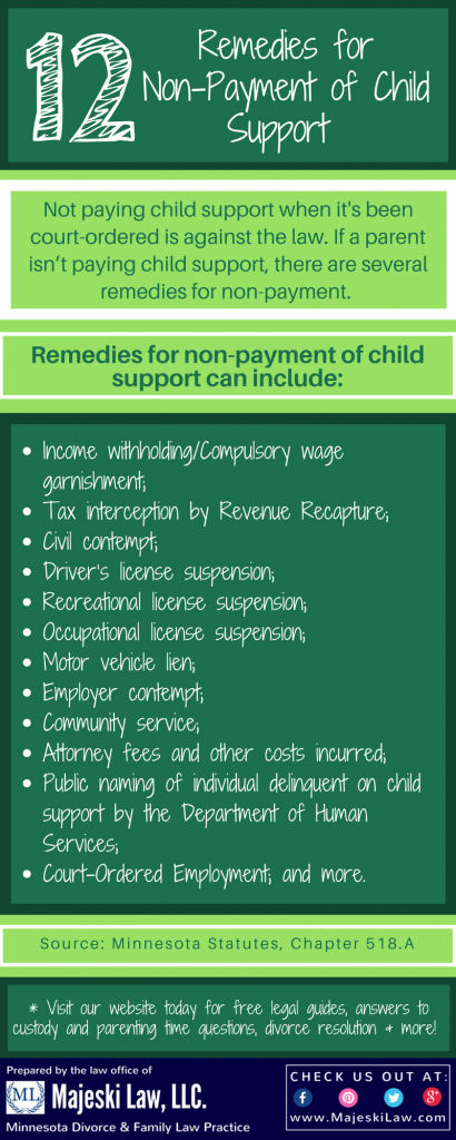 Ex isn't paying child support remedies for non-payment of child support