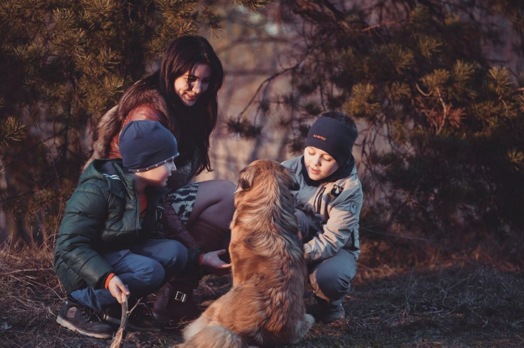 Divorcing Family with Family Pet